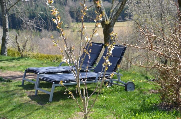 2 Alu-Liegen im Garten
